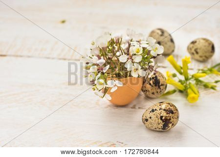 Delicate white field flowers in eggshell quail eggs yellow on wood background handmade Easter decoration