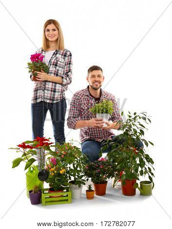 Two florists with beautiful house plants on white background