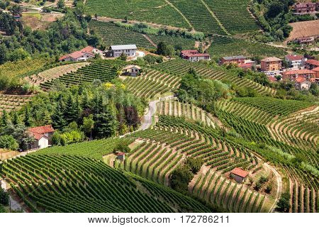 Road runs through small village surrounded by hills and green vineyards in Piedmont, Northern Italy.