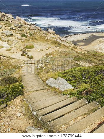 Wood Flooring Down To A Wild Beach Blue Atlantic Coast, The Cape Of Good Hope, South Africa, Cape To