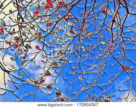 Tree branches natural background. Autumn leaf falling digital illustration. Autumn cloudy sky. Orange and red leaves falling from a tree. Tree branch silhouette. Branch ornament of tree crown picture