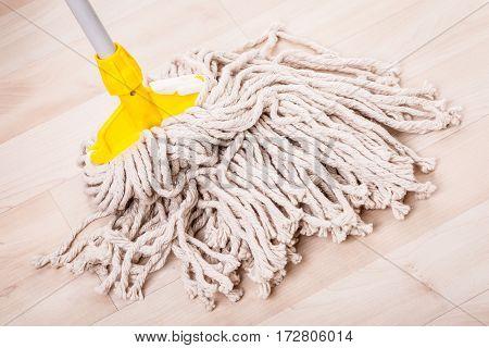 Mop Head On Wooden Floor