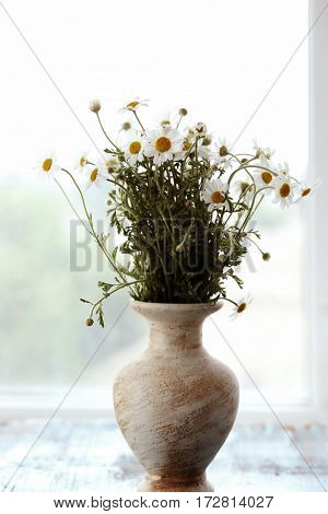 Chamomile bouquet in vase on windowsill