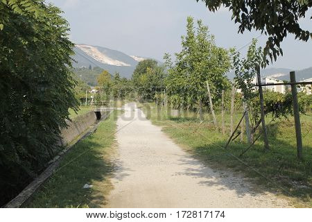 landscape with a rural road in Italy