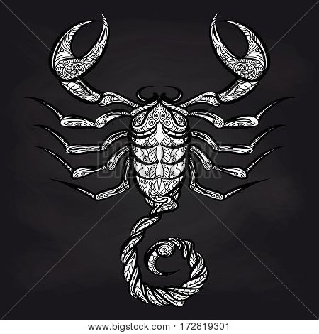 Doodle scorpion on blackboard background. Vector ornate Zodiac sign Scorpio design