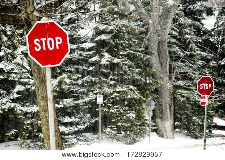 Winter road with stop signs and evergreen trees covered in snow for winter driving safety and dangerous driving conditions