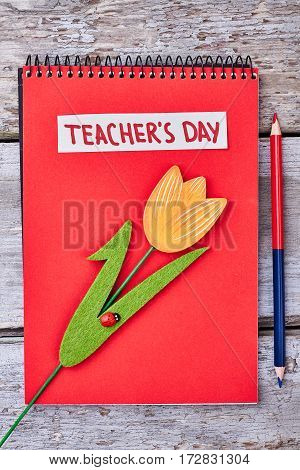 Red notebook, flower and pencil. Sincere congratulation for a teacher.