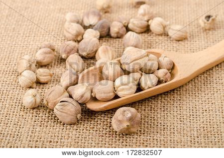 Dry cardamom seeds in wooden scoop on sack background.