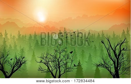 Vector illustration of Mountain forest background at sunset