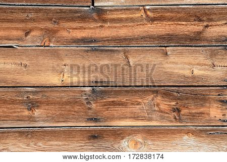 Knotted dead pine tree trunk with wavy wood grain