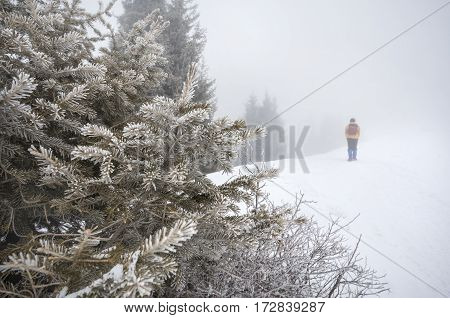 Tourist In The Snowy Mountains