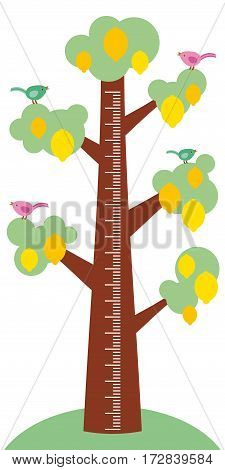 Big tree with green leaves birds and ripe yellow lemons on white background Children height meter wall sticker kids measure. Vector illustration