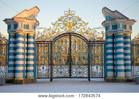 Ceremonial gate of Catherine Palace close up in the February evening. Tsarskoye Selo, Russia