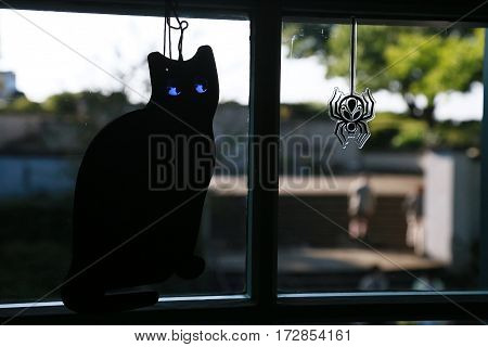 cat and the spider which were displayed to the window of the room