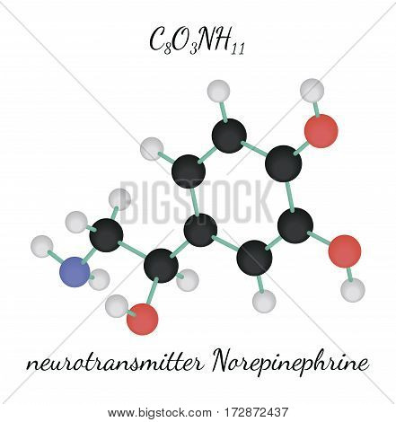 C8O3NH11 Norepinephrine 3d molecule isolated on white