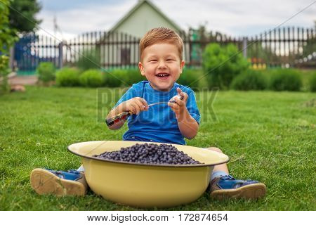 Joyful boy sitting on green grass and eating blueberries from iron bowl. Child having picnic