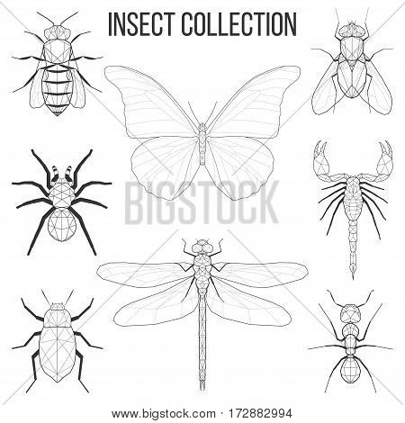 Insect set bee fly butterfly dragonfly beetle ant spider scorpion insect geometric lines silhouette isolated on white background vintage vector design element illustration