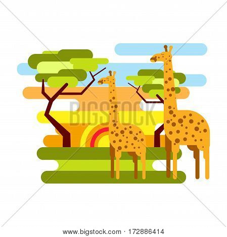 African savannah and giraffes in nature. Summer safari vacation tourism in Africa. World travel concept vector template