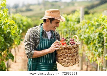 Happy farmer holding a basket of vegetables in the vineyard