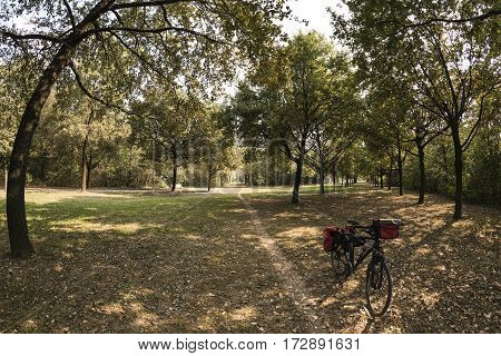Milan (Lombardy Italy): paths in the park known as Parco Nord in october with a bicycle with bags