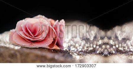 Website banner of Easter pink flower greeting card