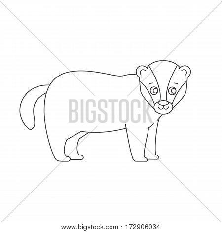 Badger for coloring book. Line art design.Isolated on white background.Line art design.Vector illustration