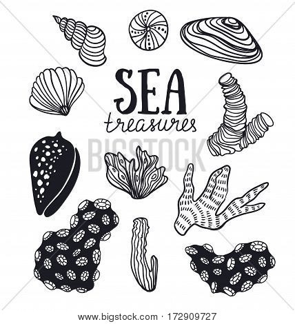 Grunge vector backgroung with sea treasures, corals, cockleshells, stones, seaweed. Vector illustration hand drawn style.