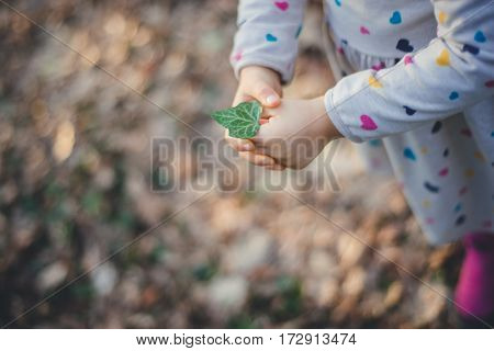 Little girl is holding a leaf of ivy. Clore up view