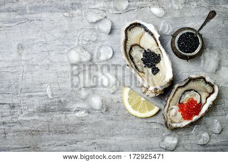 Opened oysters with red salmon and black sturgeon caviar and lemon on ice on grey concrete background. Top view flat lay copy space