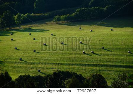 Large field with trees in the distance and bales of hay throughout Sunrise sunset
