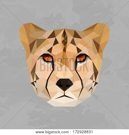 Cheetah colored head geometric lines isolated on grey background vintage design element