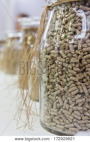 Seeds for seedlings and soil in glasses bulbs - agricultural concept, close up