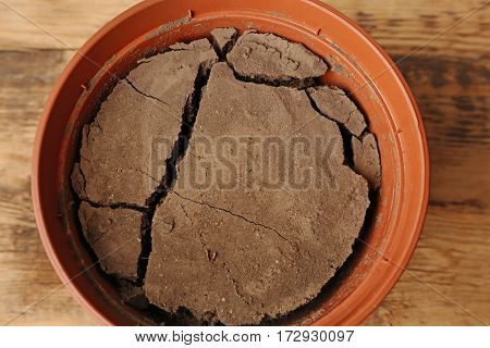 Water shortage concept. Pot with dry soil, closeup