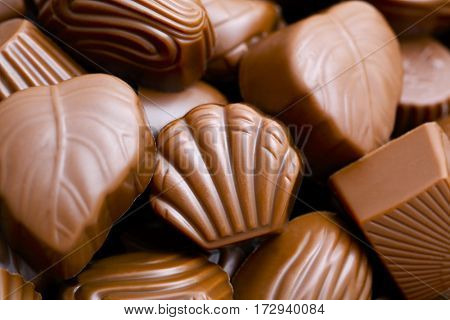 chocolate pralines, close up