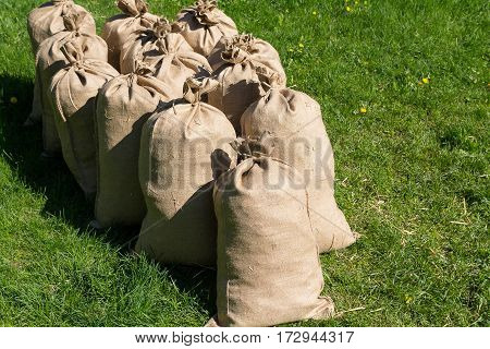 Pile of filled bags standing on the grass. Agriculture