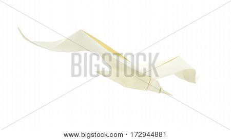 Sea gull of origami. Isolated on white background