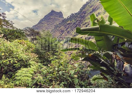 Beautiful Himalayan Inspirational Landscape. Looking and Mountains and valley with forest and green trees. Annapurna Himal Range on Annapurna Circuit Trek. Autumn season in Nepal Asia.