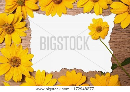 Yellow flower with a green stem lies on the blank card. Floral vintage frame on a wooden background. Designer composition with golden petals close-up and white paper. Empty space.