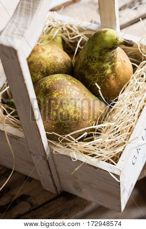Close up of heap of ripe conference pears in aged wooden box on straw local produce fall soft light
