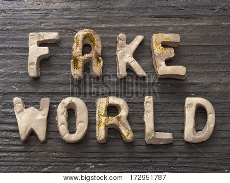 Fake World concept