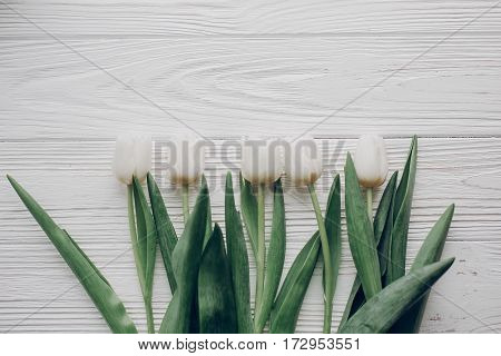 Hello Spring Flat Lay. Stylish White Tulips On Rustic Wooden Table Background Top View. Soft Light,