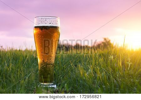 Glass of cold beer at sunset on the grass in the green field. Misted glass with water drops. The concept of travel. Advertising of beer. On the background of beautiful scenery. Business idea. Nature.