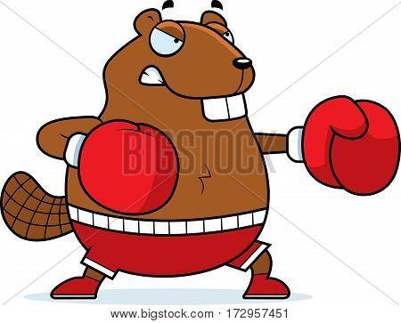 Cartoon Beaver Boxing
