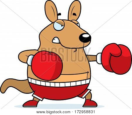 Cartoon Wallaby Boxing