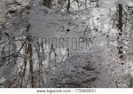 wet crystal puddles after spring rain with reflection of the trees in covered thin night ice