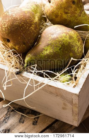 Conference pears in wood box on straw summer autumn harvest rustic style authentic closeup