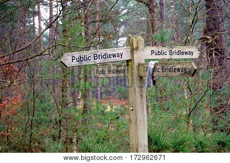 Four Way Public Bridleway Sign In A Woodland