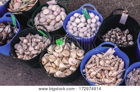 Sale of souvenirs empty shells on the street in the village of Lynmouth. North Devon. UK