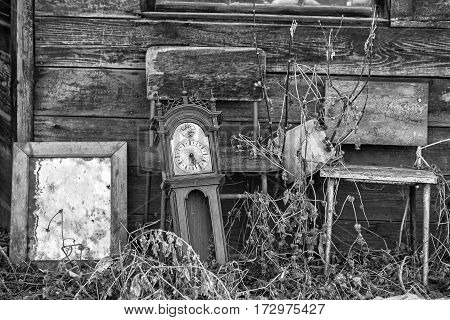 An old grandfathers' clock mirror and old chairs abandoned outdoors in tall weeds in black and white