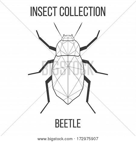 Beetle insect geometric lines silhouette isolated on white background vintage vector design element illustration